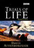 The Trials of Life